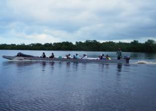 IHS dugout transports half a team up the Kruta River in Honduras.